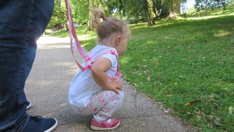 Why I got reins for my daughter. son reins, child reins, www.mumsymidwife.com